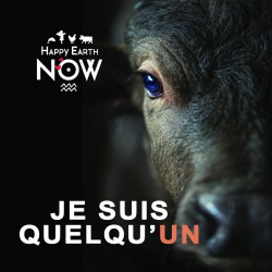 "Autocollant Happy Earth NOW - ""Je suis quelqu'un"" - Vache"